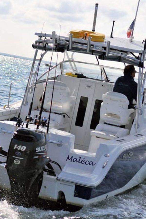 Sea Fox 256 WA à vendre